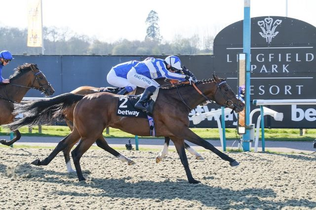 Bangkok reels in Palavecino to win the Betway Easter Classic.jpg